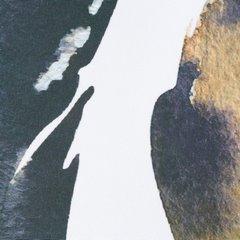 Zasłona nadruk z piórami styl boho przelotki biała 140x250cm - 140 X 250 cm - biały  4